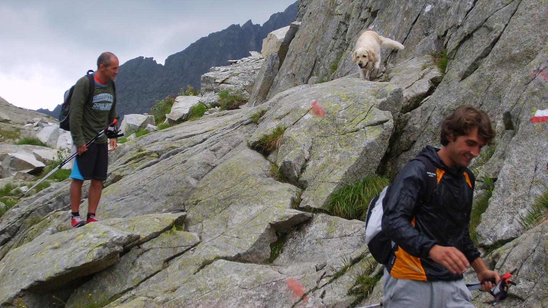 Nordic Walking Madonna di Campiglio Dolomites Walking Mountain